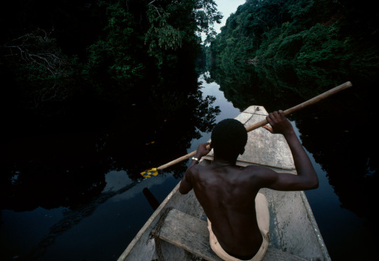 GABON. Canoe ride through the jungle on the lagoon of Farnand Vaz, near the Mission of Saint Anne